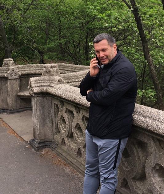 Телевизионный ведущий  Соловьев пояснил  собственный  визит вНью-Йорк