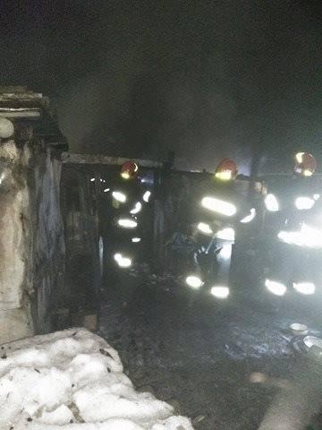 Во Львове дотла сгорел собачий приют: появились фото