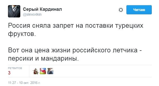 РФ иТурция продолжат нормализацию отношений— Путин