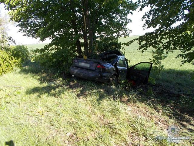 Авто ссемьей игодовалым сыном протаранило дерево наЧерниговщине