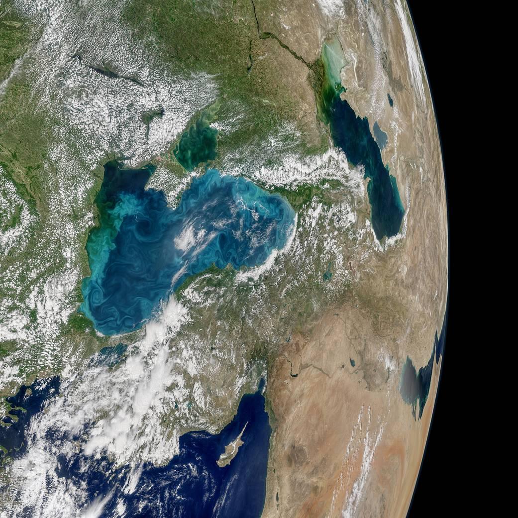 NASA показало зкосмосу Чорне море зацвітіння планктону