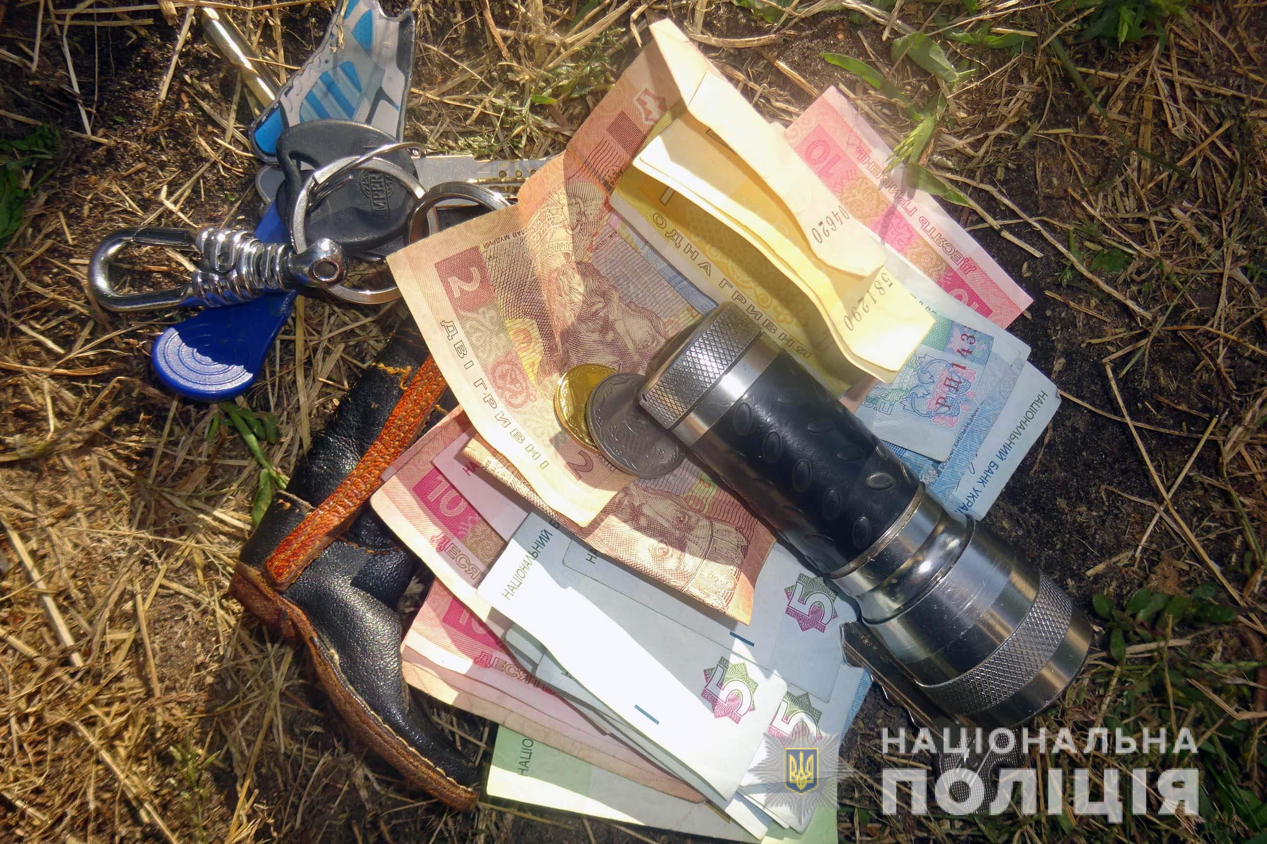В Киеве поймали мастеровитых домушников - фото 13
