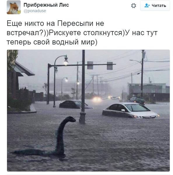 27515d281fec82c8ce7337d1c2dc067e Стихия в Одессе: сети позабавила шутка местного жителя
