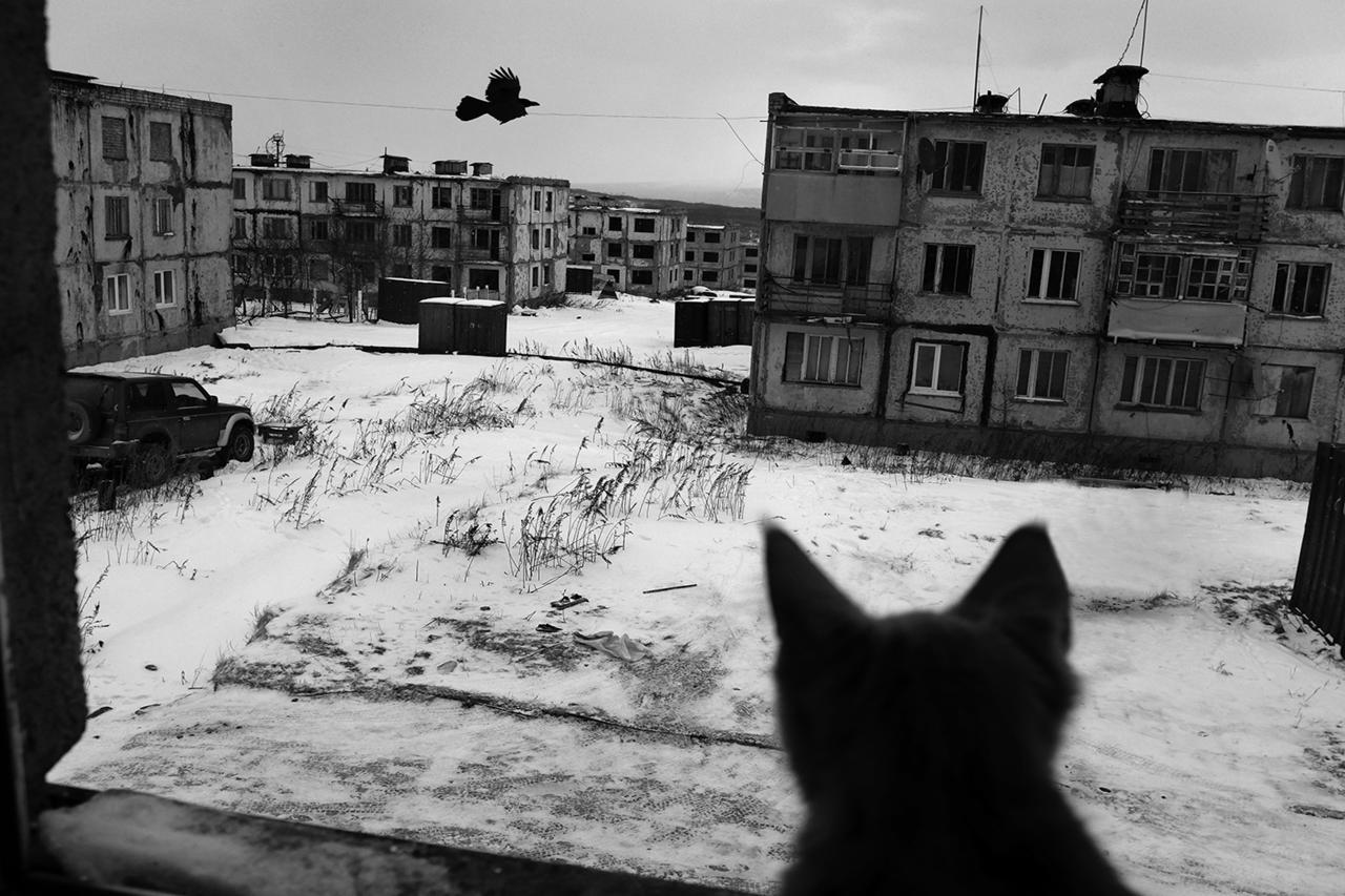 Российские оккупанты строят военную базу на границе с Харьковской областью - Цензор.НЕТ 4537