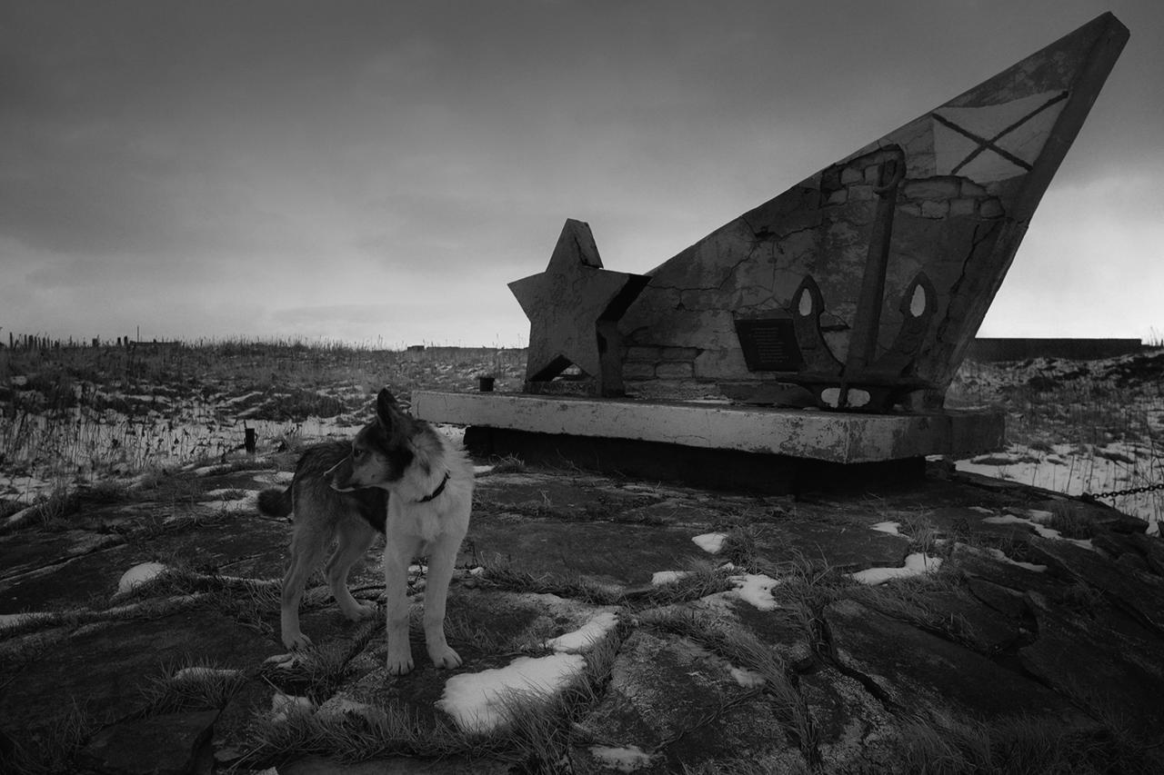 Российские оккупанты строят военную базу на границе с Харьковской областью - Цензор.НЕТ 8548