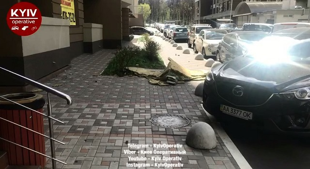 ВКиеве из-за сильного ветра упало внушительное дерево