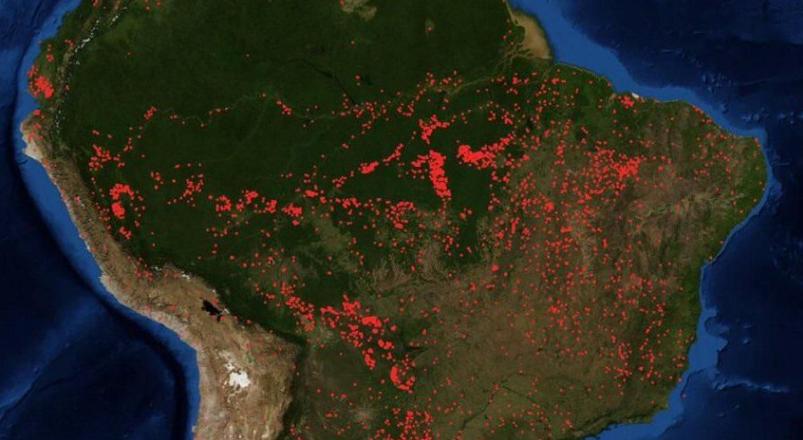 Трамп похвалил работу Бразиии попожарам вАмазонии