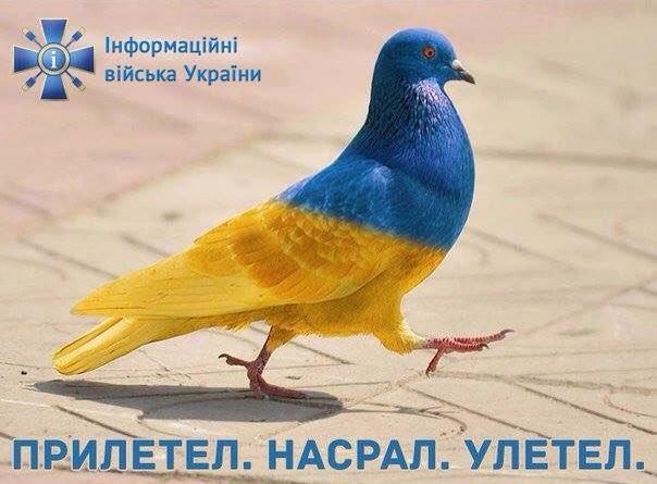 http://apostrophe.com.ua/uploads/23082016/3a019e065ab435bed962a40c377bc961.jpg