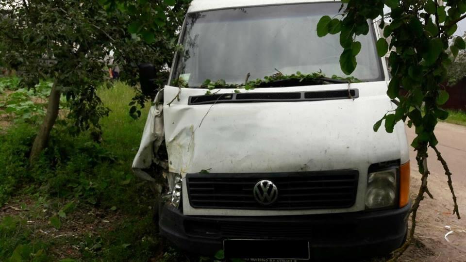 НаЖитомирщині п'яний водій збив двох дітей