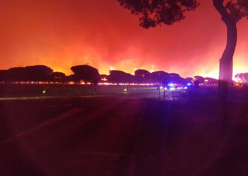В Іспанії через лісові пожежі евакуювали понад тисячу осіб