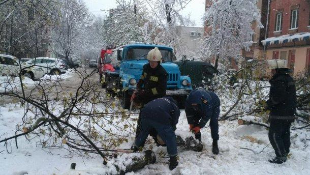 Через сніг і вітер наЗакарпатті знеструмлено селища і перекрито дороги