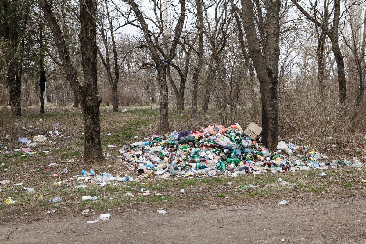 картинки мусорка много мусора сложное жизни ценить