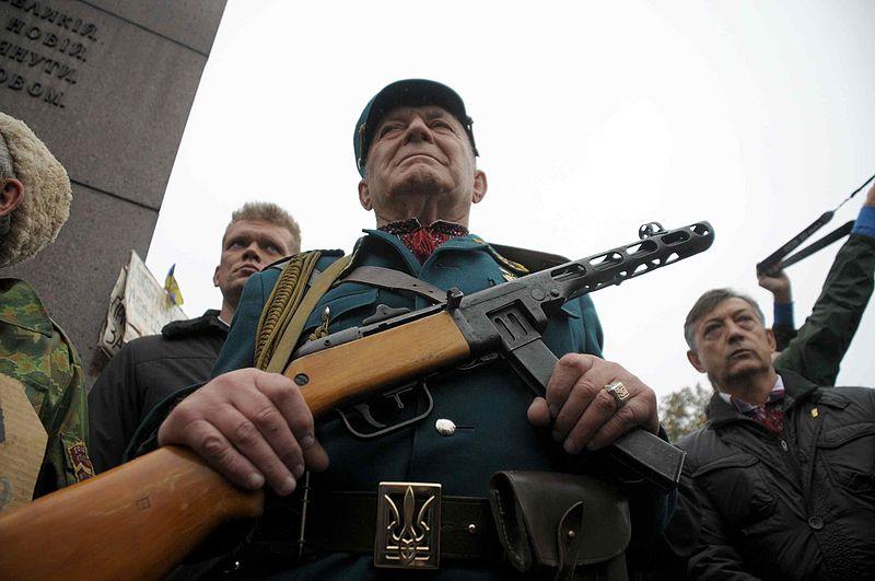Вятрович анонсировал работу по реабилитации Украинской повстанческой армии