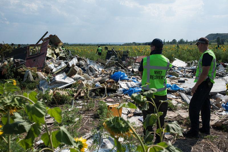 Следствие рассматривает две версии причин крушения малайзийского самолета