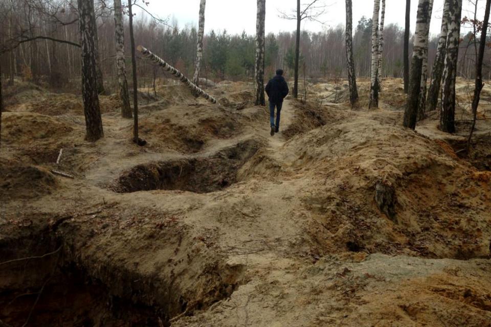 На добычу янтаря в Волынской области собираются поставить нового смотрящего с таможни