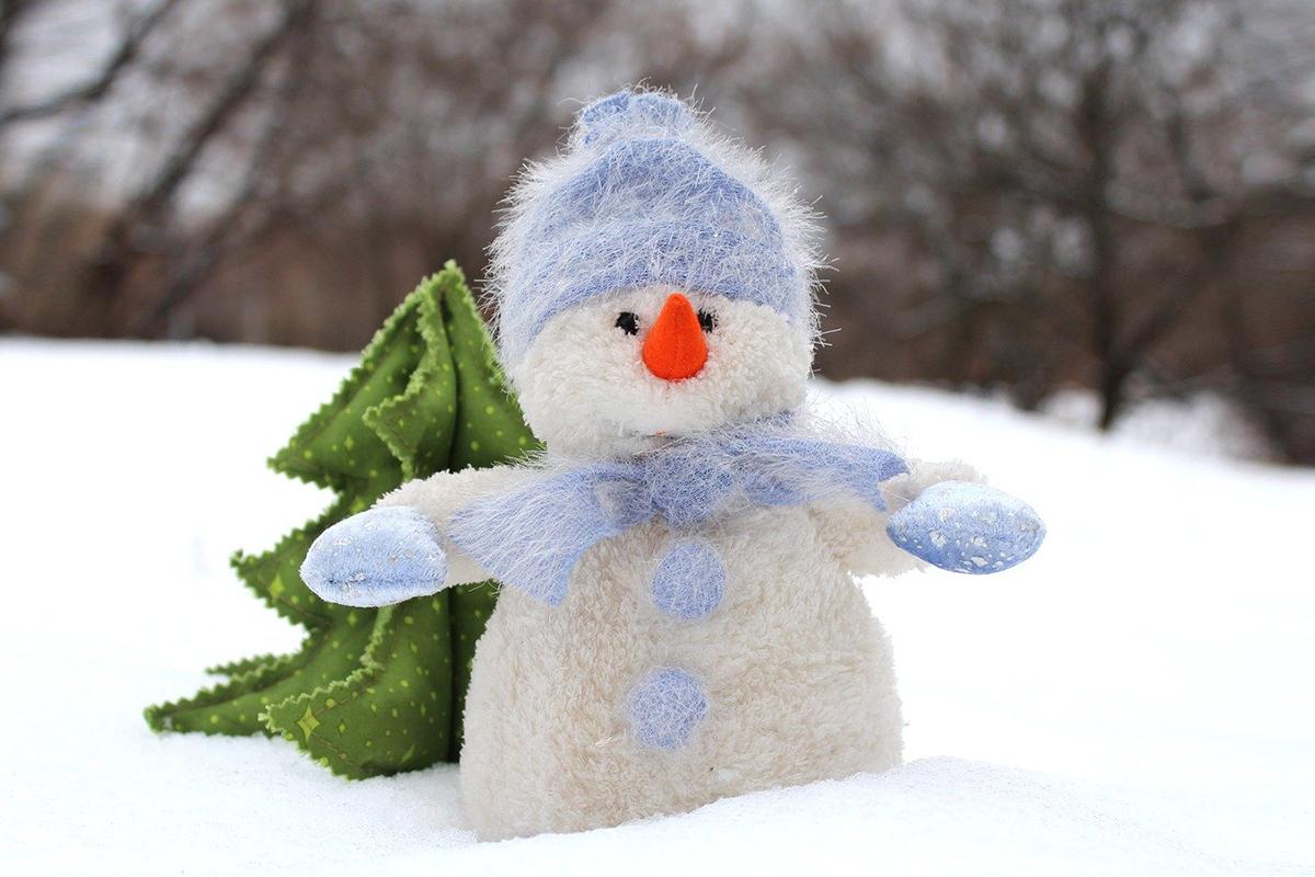 Народный синоптик прогнозирует лютую зиму