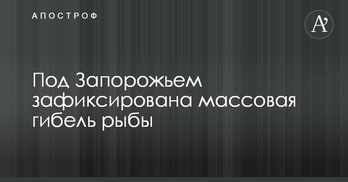 0ec5a956d69f В Молочном лимане Запорожской области произошел массовый замор рыбы. Об  этом сообщает пресс-служба Запорожской областной государственной  администрации (ОГА) ...