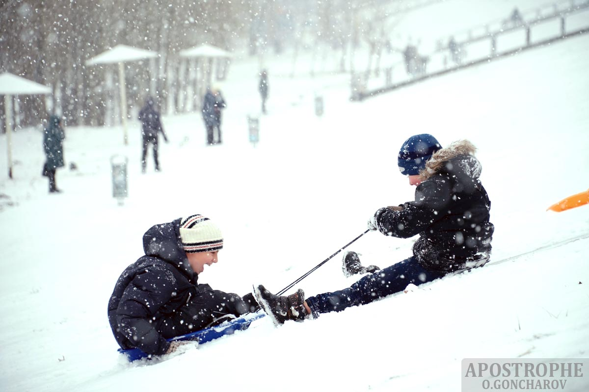 снігопад Київ оболонь діти птахи