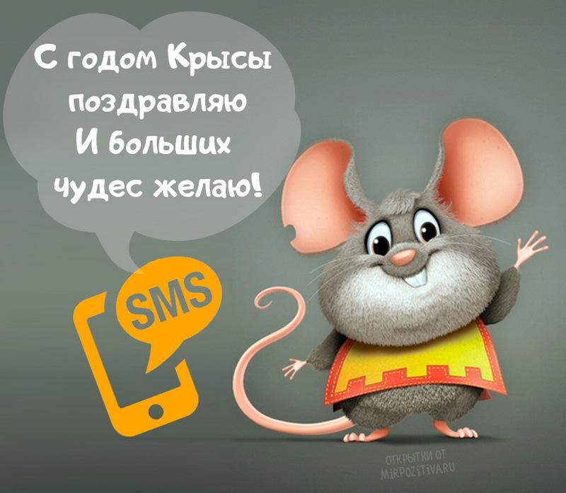 Самые прикольные поздравления с годом крысы
