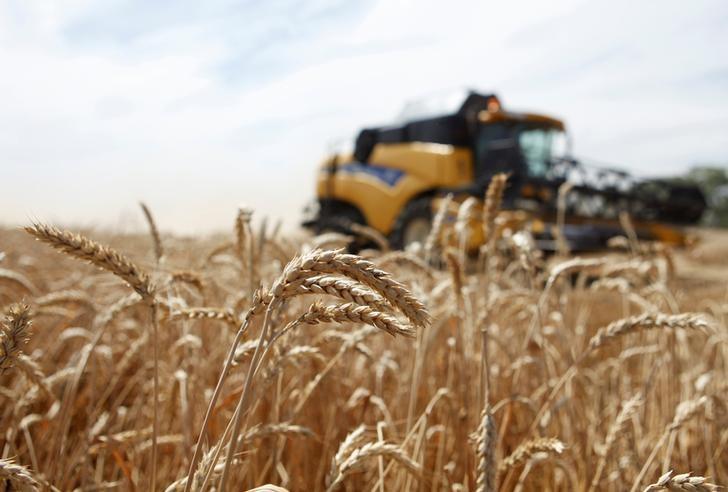 Виталий Скоцик уверен, что аграрии - лучшая альтернатива сегодняшнему политикуму, потерявшему доверие людей