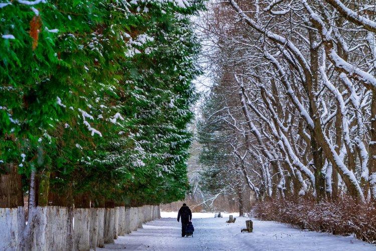 До кінця тижня в Україну повернеться плюсова температура