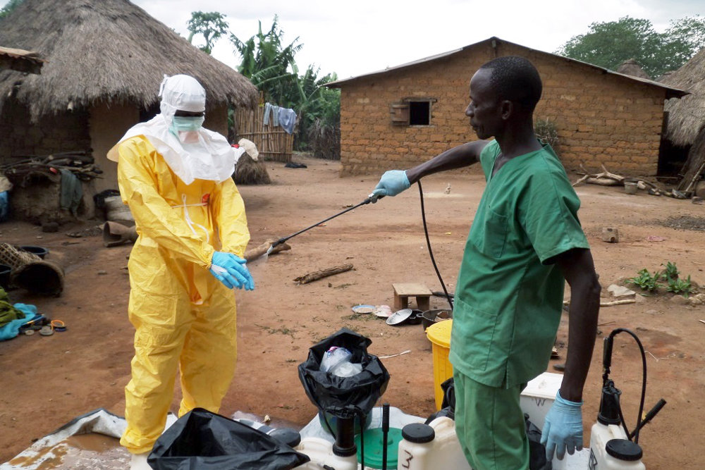 epidemic outbreaks in africa essay