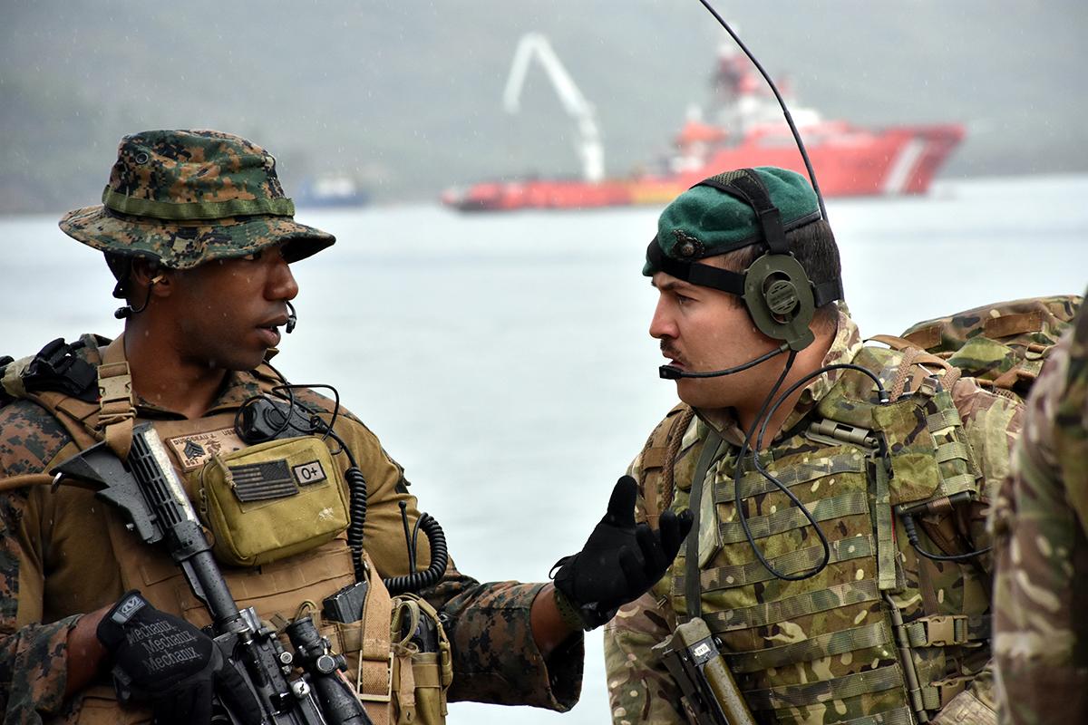 Як розрив між Північноатлантичним Альянсом та Анкарою шкодить інтересам України