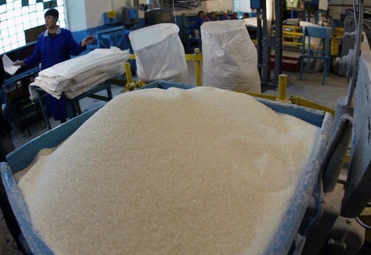 Объемы экспорта сахара увеличатся в несколько раз
