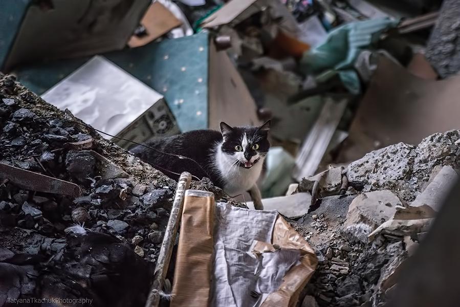 Россия реализует не один сценарий дестабилизации Украины
