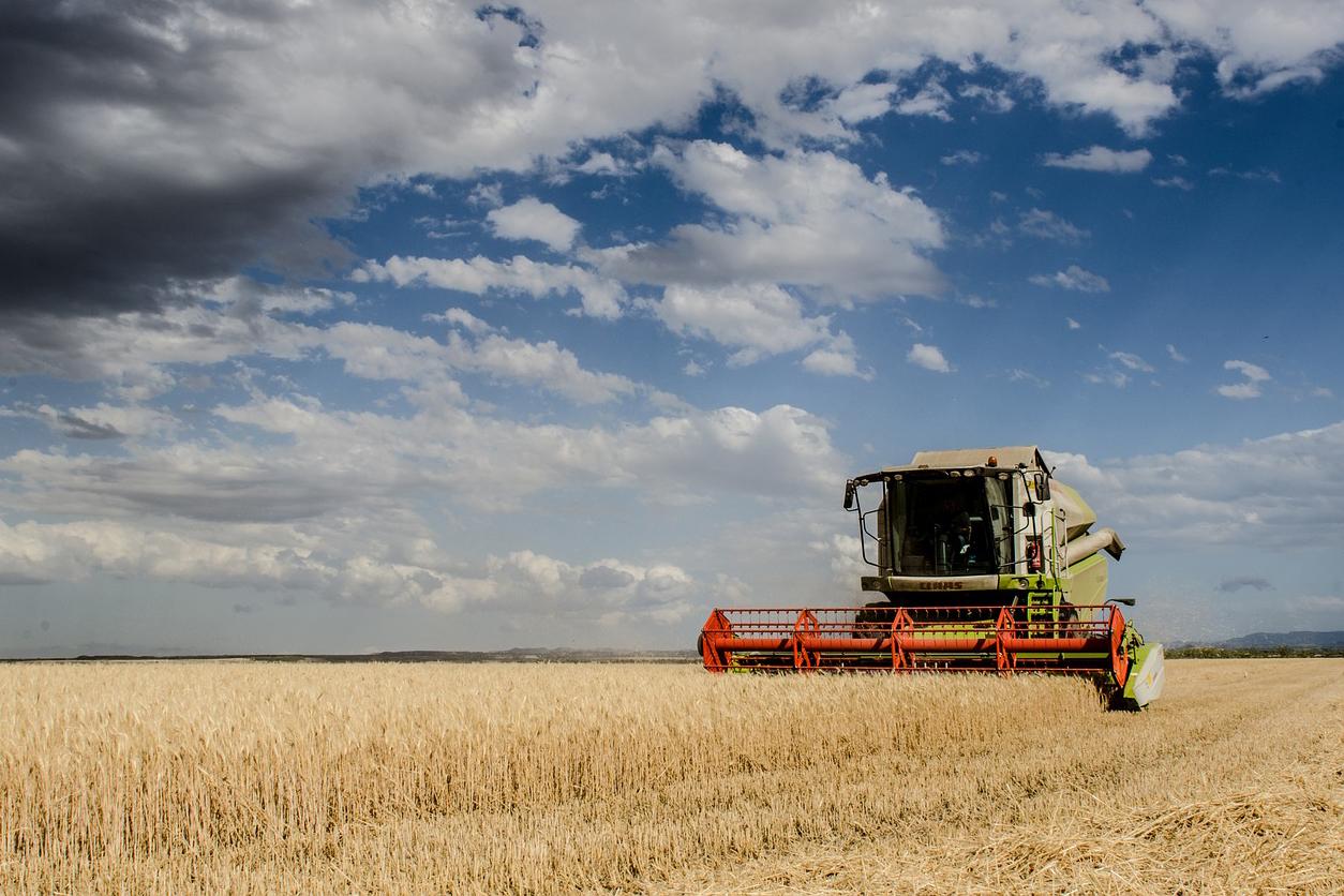 Александр Пасхавер отметил, что улучшаются качественные показатели украинской экономики