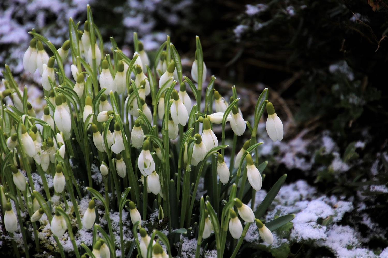 Прогноз погоди в Україні на 26-31 березня