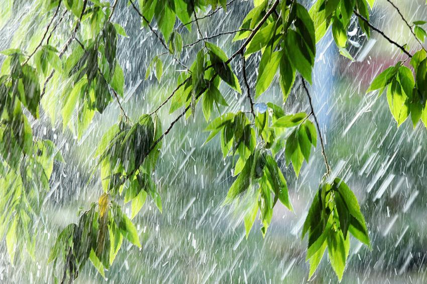 Синоптик спрогнозировала погоду навыходные— «ФАКТЫ»