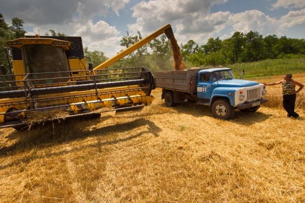 Власти пообещали аграриям энергоресурсы