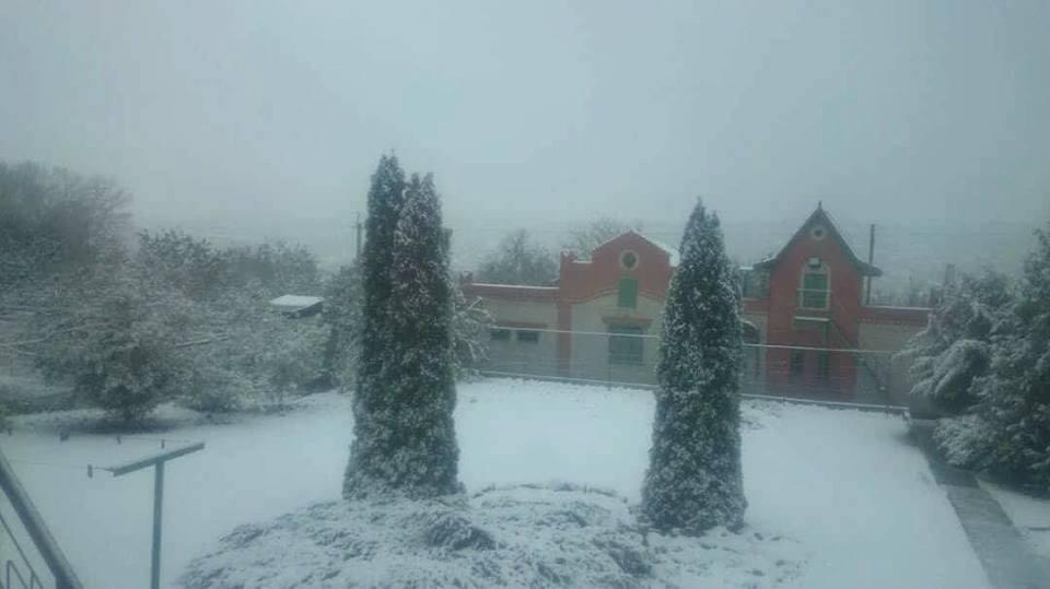 ВХарькове резко поменялась погода, выпал 1-ый снег