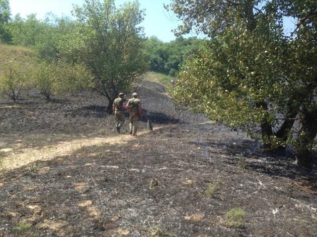 Директор «Хортиці» просить посилити охорону заповідника через підпали