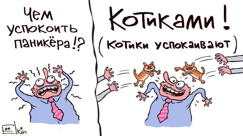 Паника из-за пандемии коронавируса: появилась забавная карикатура с котиками