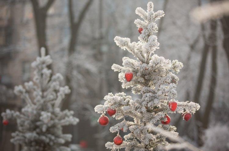Прогноз погоди з грудня по лютий