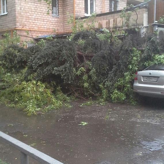 В итоге урагана в российской столице погибло шесть человек