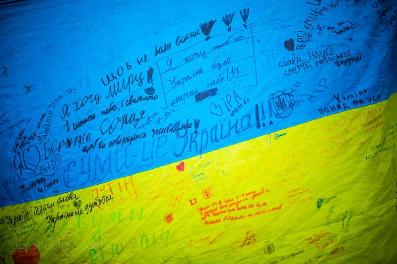Экспертные советы по объединению Украины