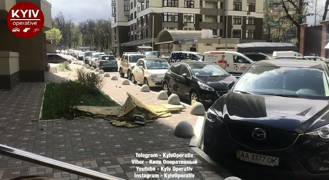 Настоличном Подоле упавшее дерево разбило автомобиль