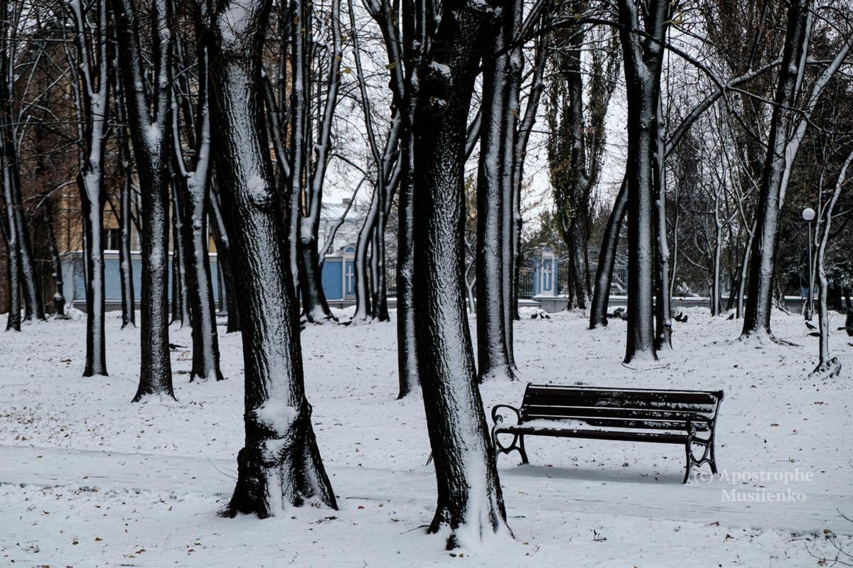 НаКиев надвигается сильный снегопад ишквальный ветер