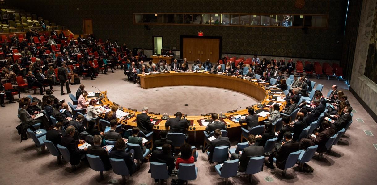 Украина может попытаться продвигать свои позиции во время своего председательства в СБ ООН